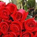 розы в новосибирске с доставкой