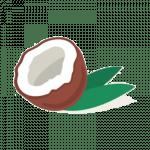 ЭЦП-кокос