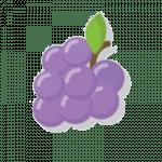 ЭЦП-виноградик